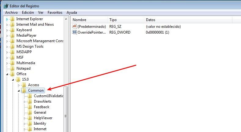 Registro common Office 2013